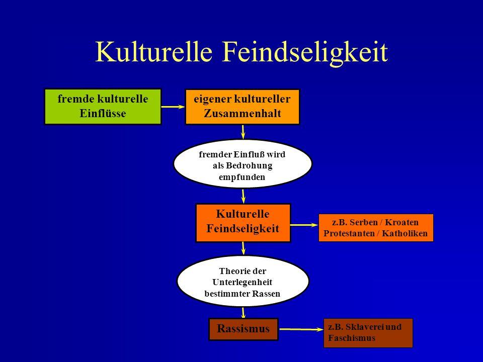 Dreieck der Kulturebenen Ver- haltens- normen (z.B. Unternehmenskultur) Werte und Normen (z.B. geschlechtsspezifisches Rollenverhalten, Familienwerte,