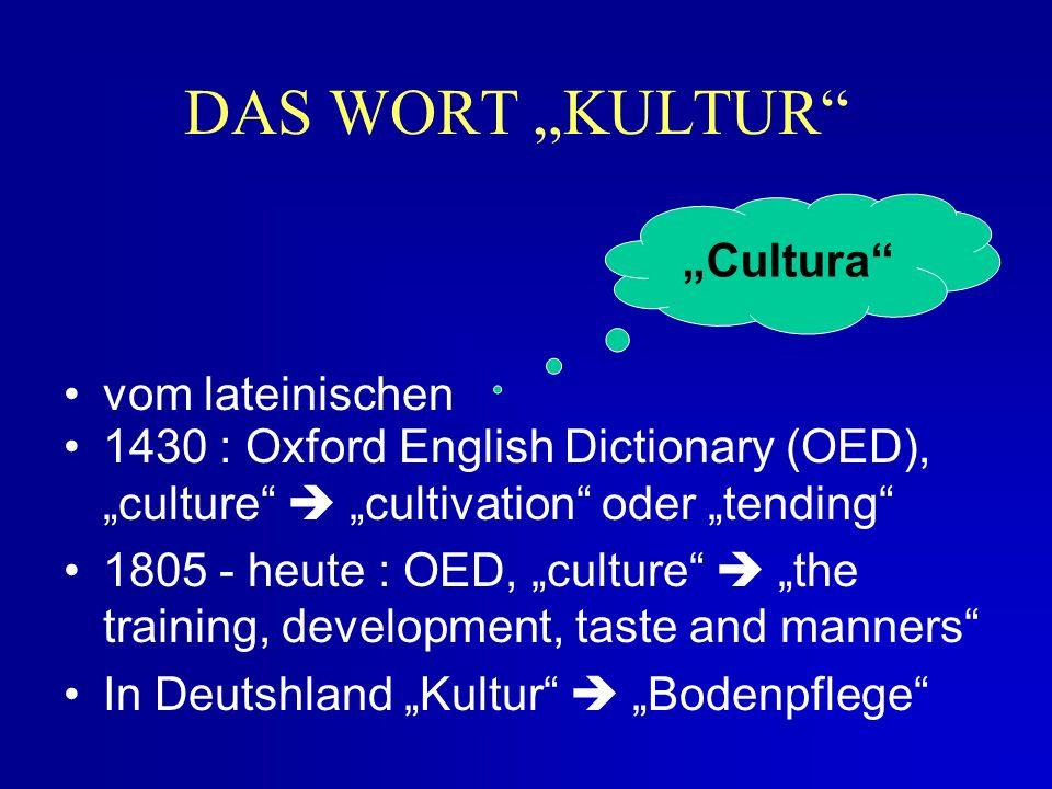 Dreieck der Kulturebenen Ver- haltens- normen (z.B.