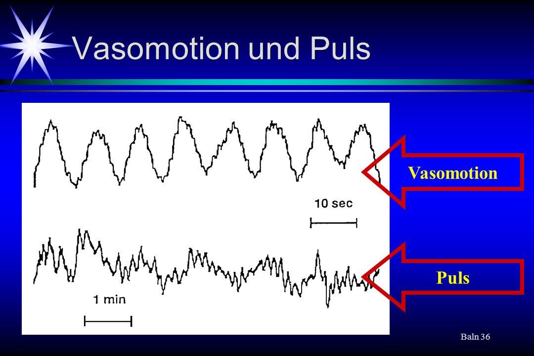 Baln 36 Vasomotion und Puls Vasomotion Puls