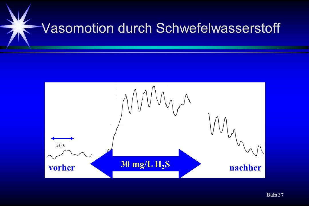 Baln 37 Vasomotion durch Schwefelwasserstoff 30 mg/L H 2 S nachhervorher 20 s