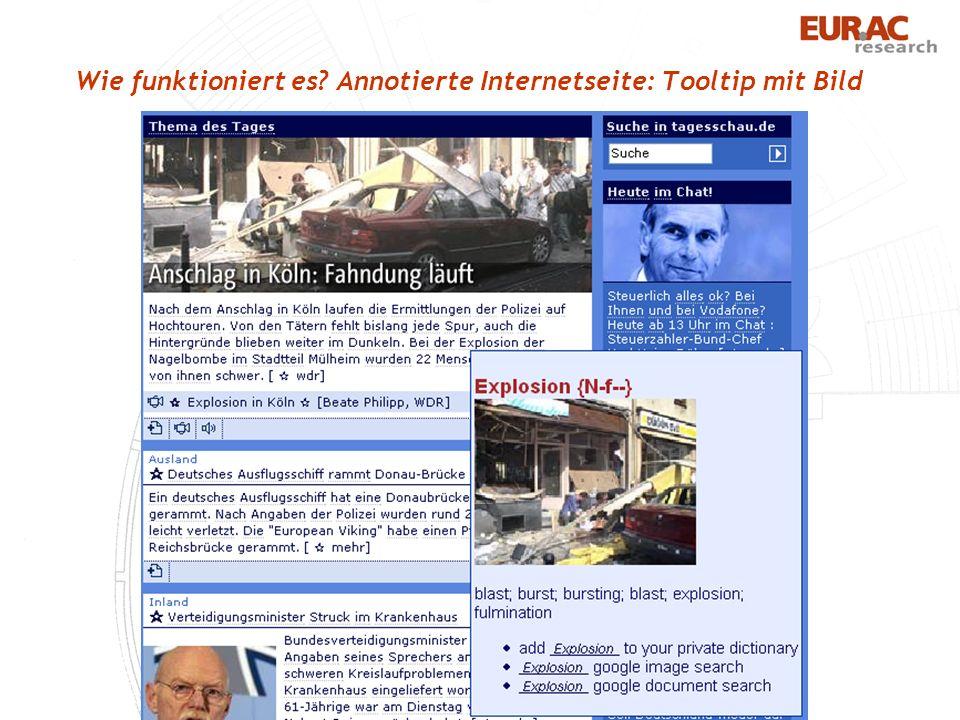 Wie funktioniert es Annotierte Internetseite: Tooltip mit Bild