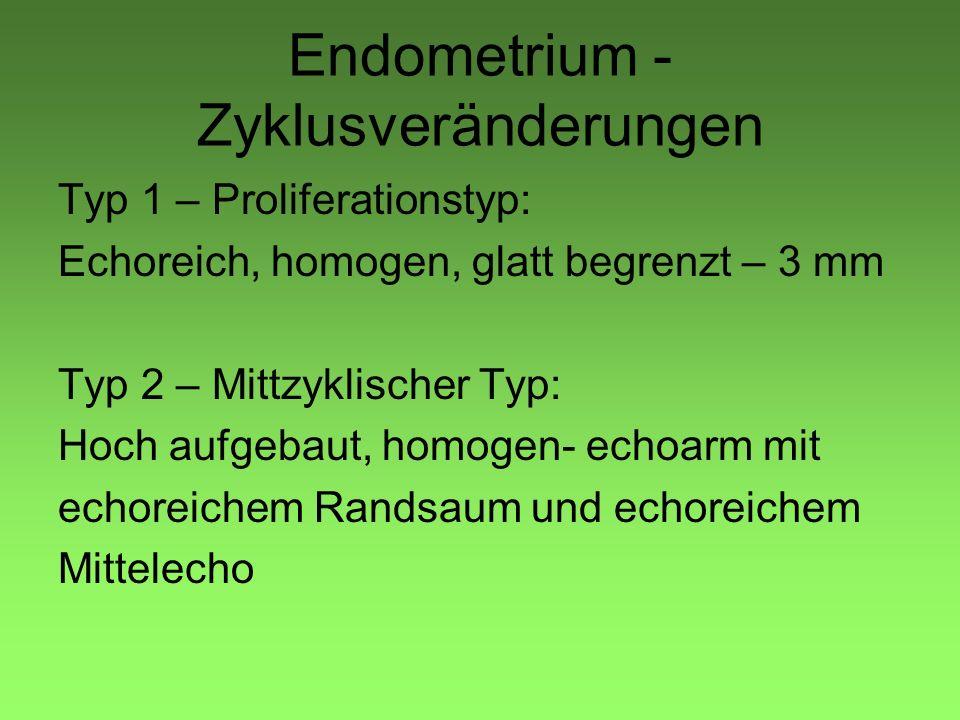Endometrium - Zyklusveränderungen Typ 1 – Proliferationstyp: Echoreich, homogen, glatt begrenzt – 3 mm Typ 2 – Mittzyklischer Typ: Hoch aufgebaut, hom