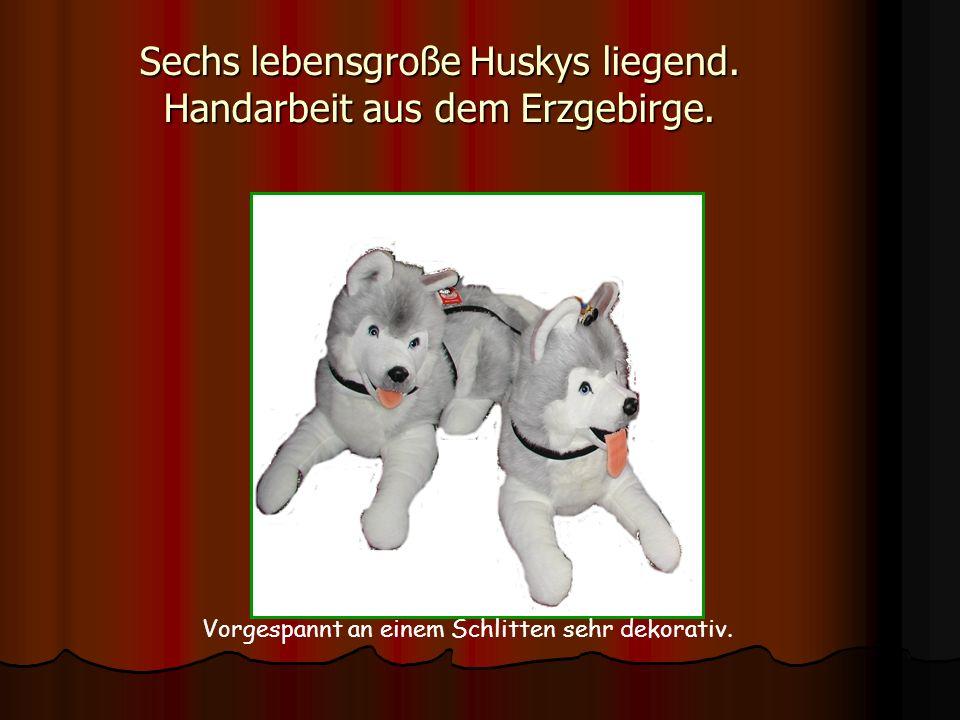 Sechs lebensgroße Huskys liegend. Handarbeit aus dem Erzgebirge. Vorgespannt an einem Schlitten sehr dekorativ.