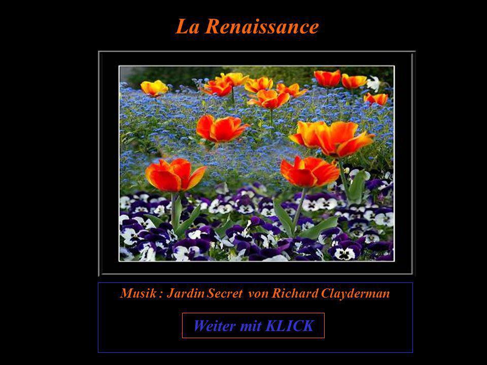 Je älter ich werde, um so öfter danke ich meinem Schöpfer, mich noch einmal mehr die « Wiedergeburt des Frühlings » erleben zu lassen !