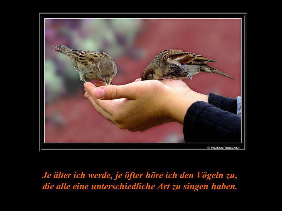 Je älter ich werde, je öfter höre ich den Vögeln zu, die alle eine unterschiedliche Art zu singen haben.
