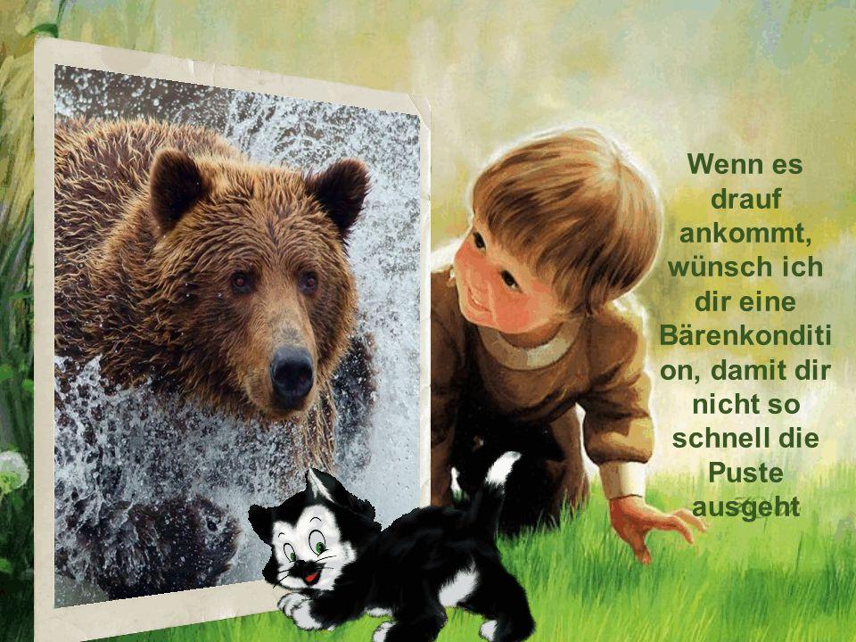 Ich wünsche dir, dass du den Hintern hoch bekommst, wenn du irgendwo eine Bärenchance witterst