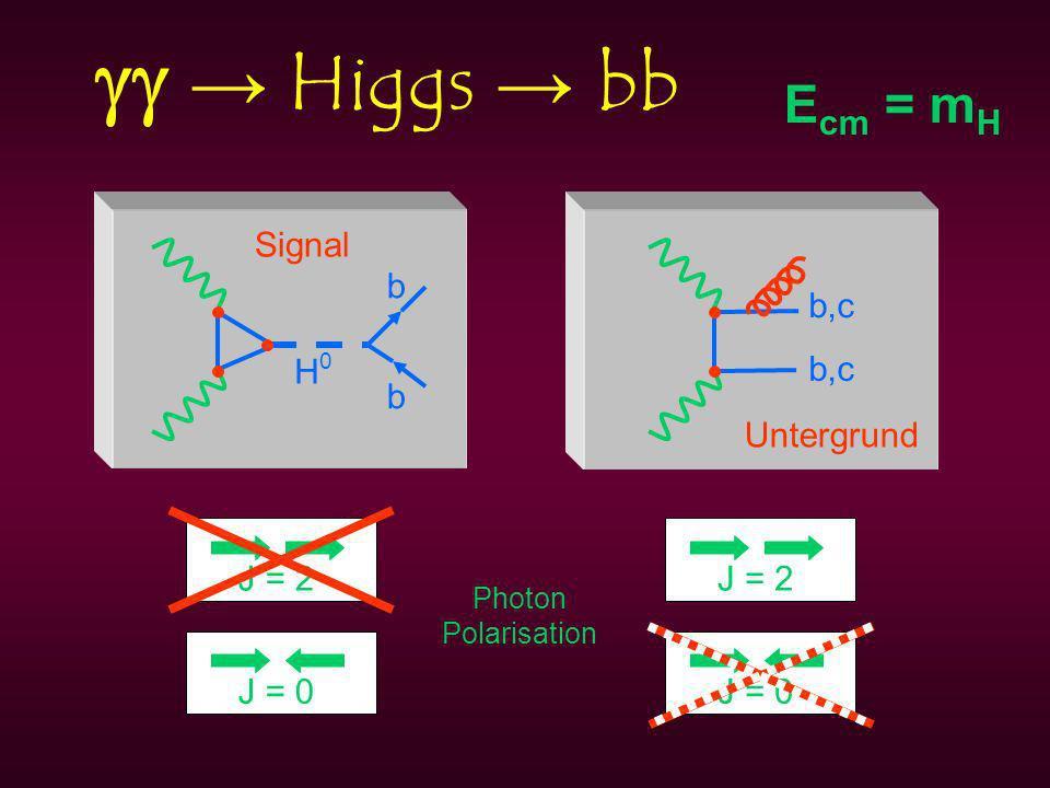 Higgs bb H0H0 b b b,c Signal Untergrund H0H0 J = 2J = 0 J = 2 Photon Polarisation E cm = m H