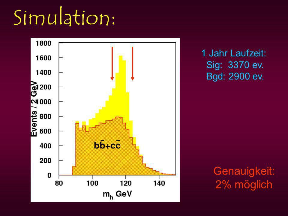 Simulation: Genauigkeit: 2% möglich 1 Jahr Laufzeit: Sig: 3370 ev. Bgd: 2900 ev.