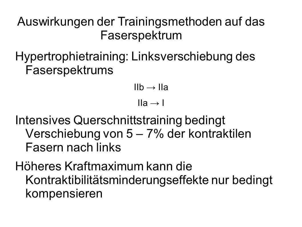Neuronales Aktivierungstraining: Explosiver Krafteinsatz – ab ca.