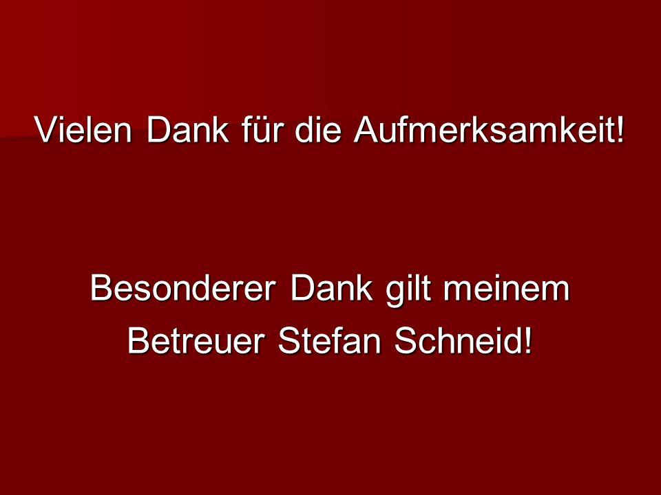 Vielen Dank für die Aufmerksamkeit! Besonderer Dank gilt meinem Betreuer Stefan Schneid!