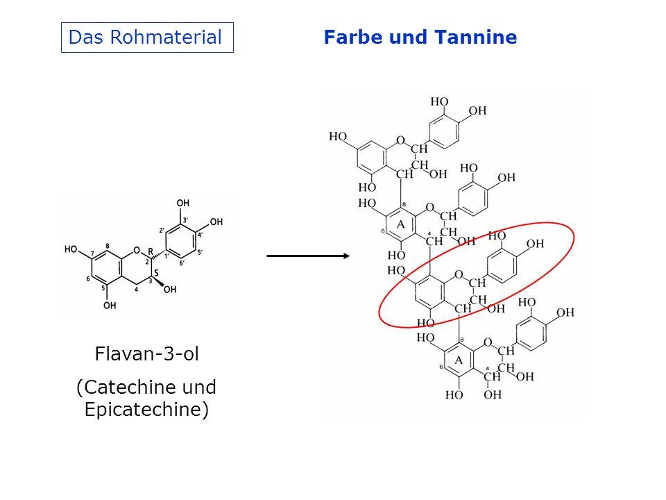 Das Rohmaterial Flavan-3-ol (Catechine und Epicatechine) Farbe und Tannine