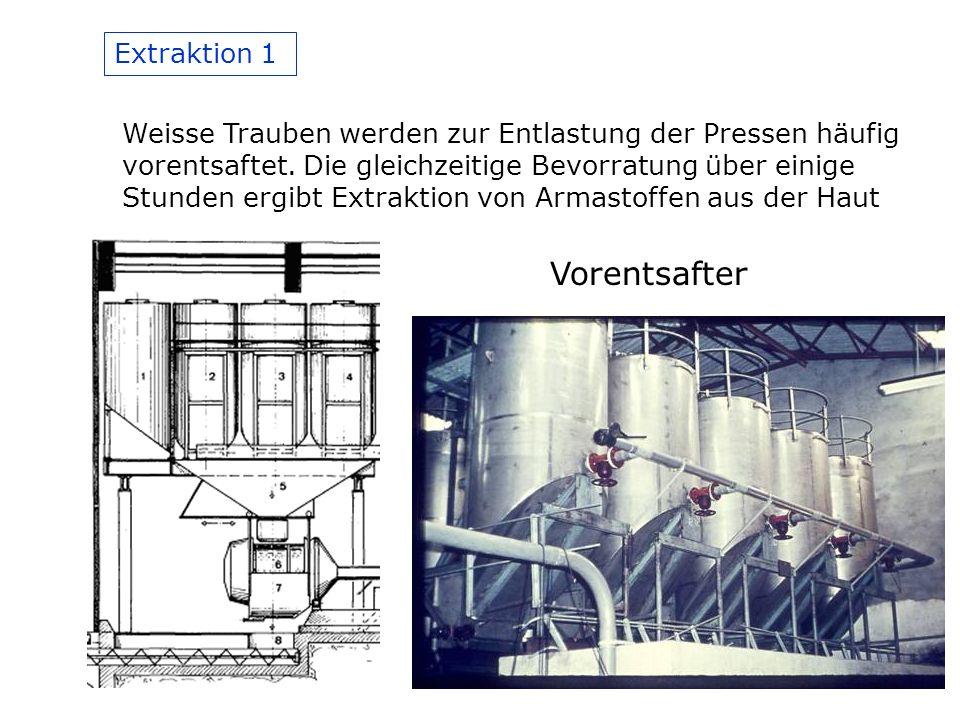 Extraktion 1 Weisse Trauben werden zur Entlastung der Pressen häufig vorentsaftet.