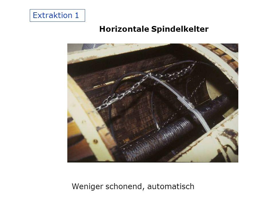 Extraktion 1 Horizontale Spindelkelter Weniger schonend, automatisch