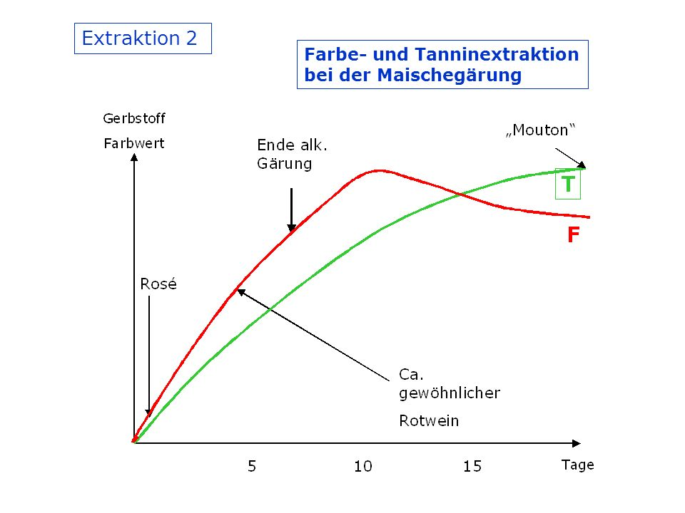 Extraktion 2 Farbe- und Tanninextraktion bei der Maischegärung