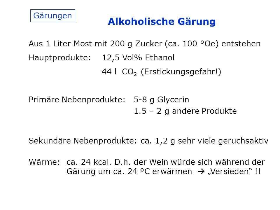 Gärungen Alkoholische Gärung Aus 1 Liter Most mit 200 g Zucker (ca.