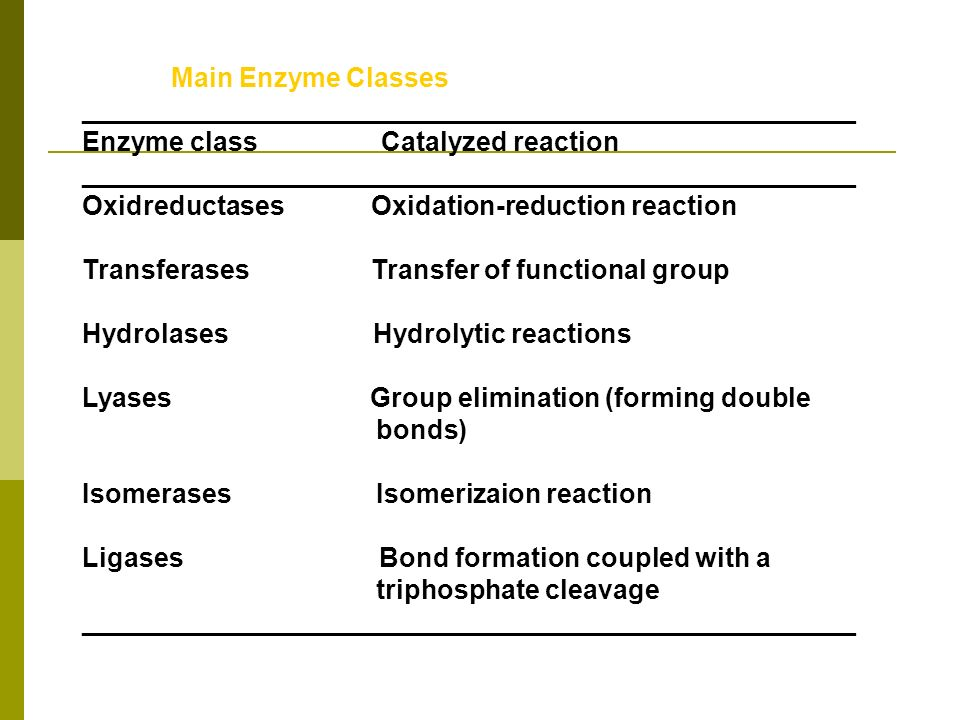 Main Enzyme Classes ____________________________________________________ Enzyme class Catalyzed reaction _____________________________________________
