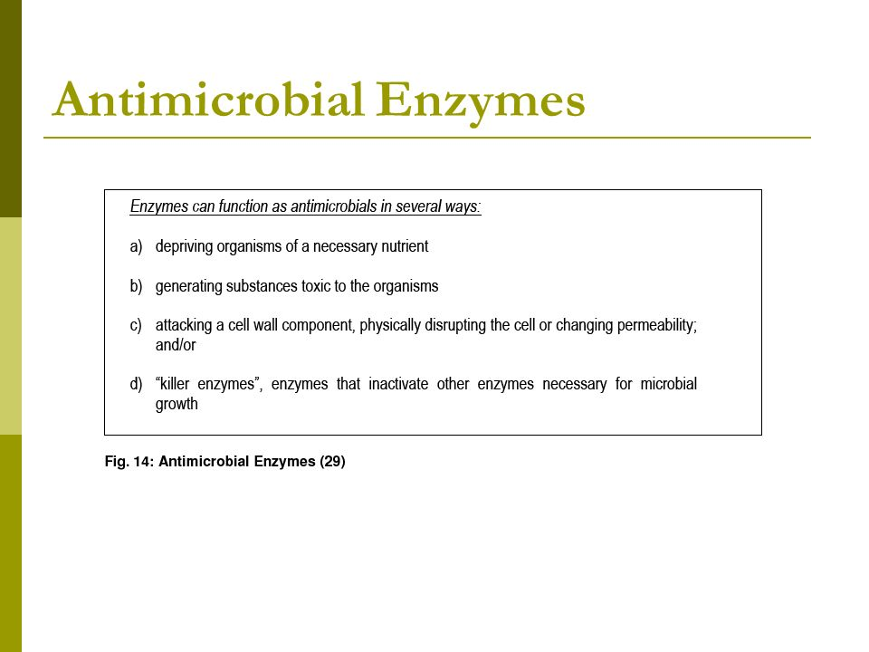 Antimicrobial Enzymes