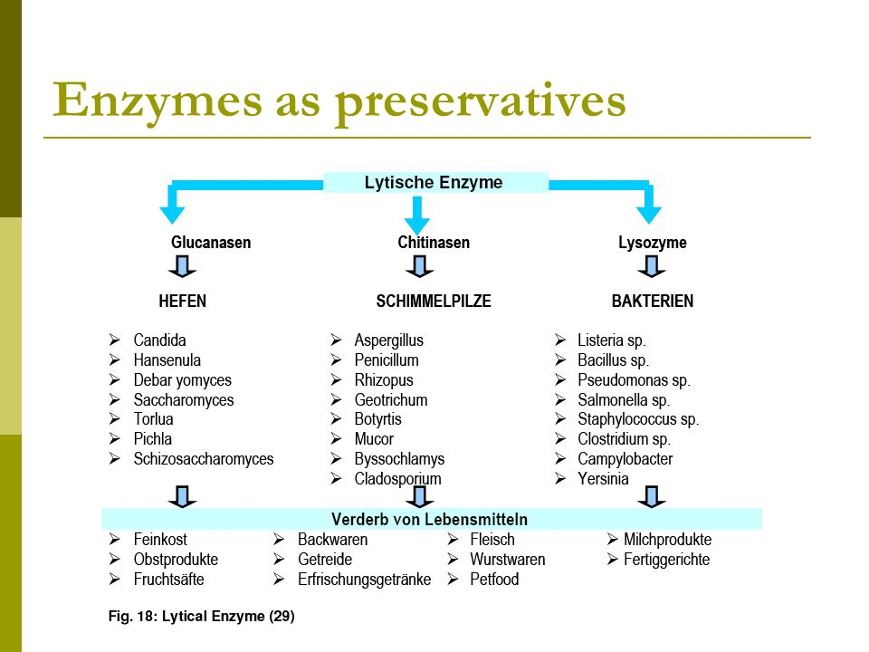 Enzymes as preservatives