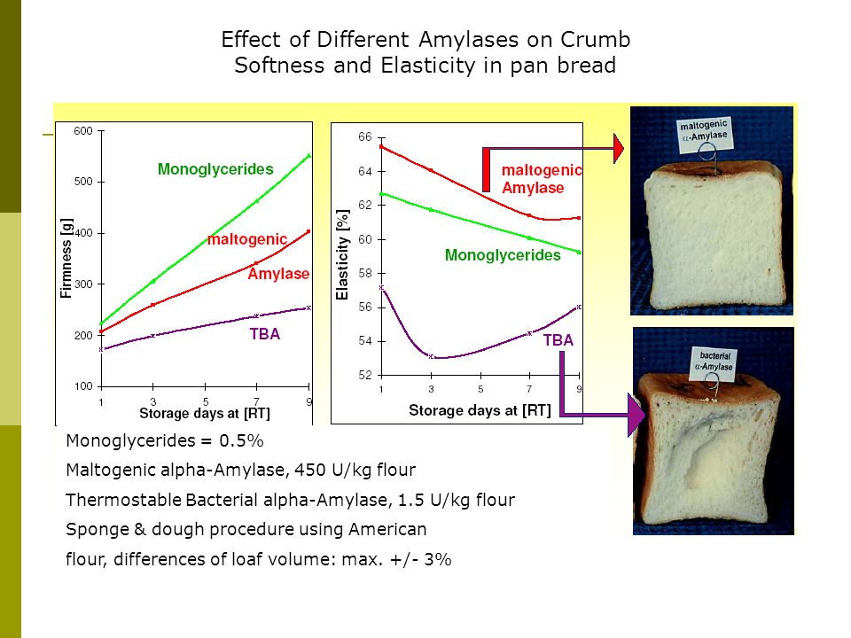 Effect of Different Amylases on Crumb Softness and Elasticity in pan bread Monoglycerides = 0.5% Maltogenic alpha-Amylase, 450 U/kg flour Thermostable
