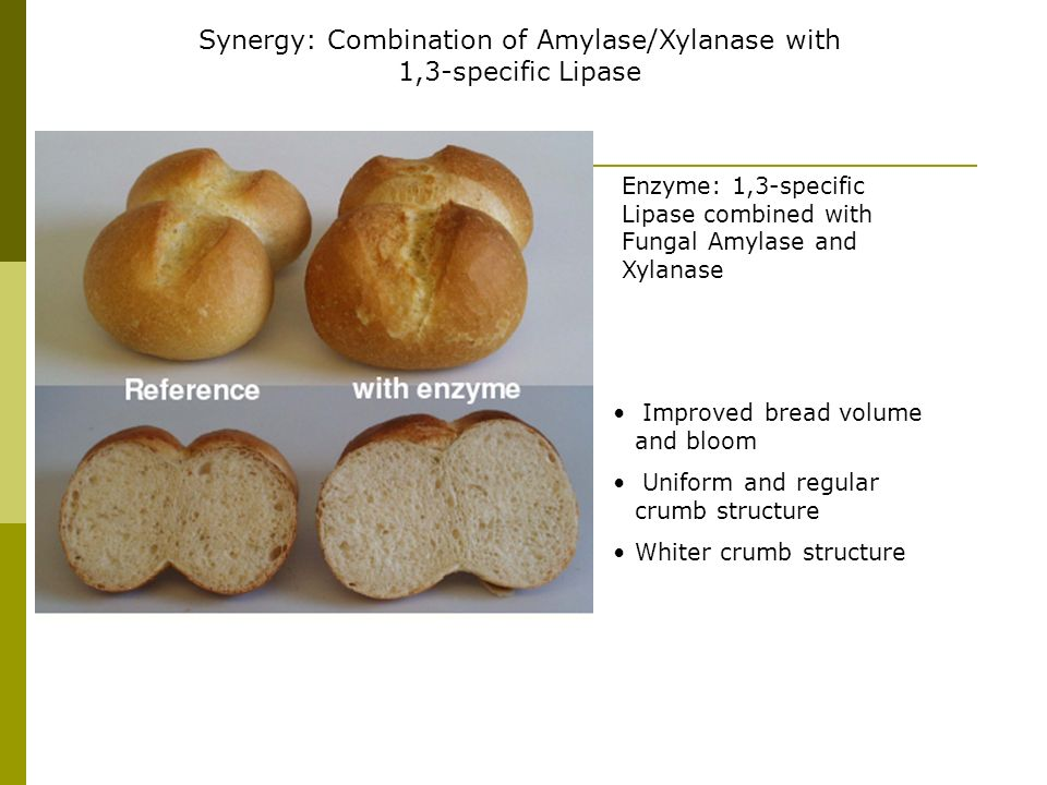 Synergy: Combination of Amylase/Xylanase with 1,3-specific Lipase Enzyme: 1,3-specific Lipase combined with Fungal Amylase and Xylanase Improved bread