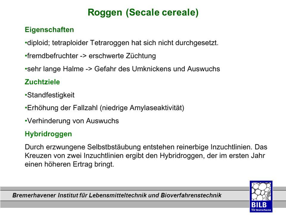 Bremerhavener Institut für Lebensmitteltechnik und Bioverfahrenstechnik Dateinamen Roggen (Secale cereale)