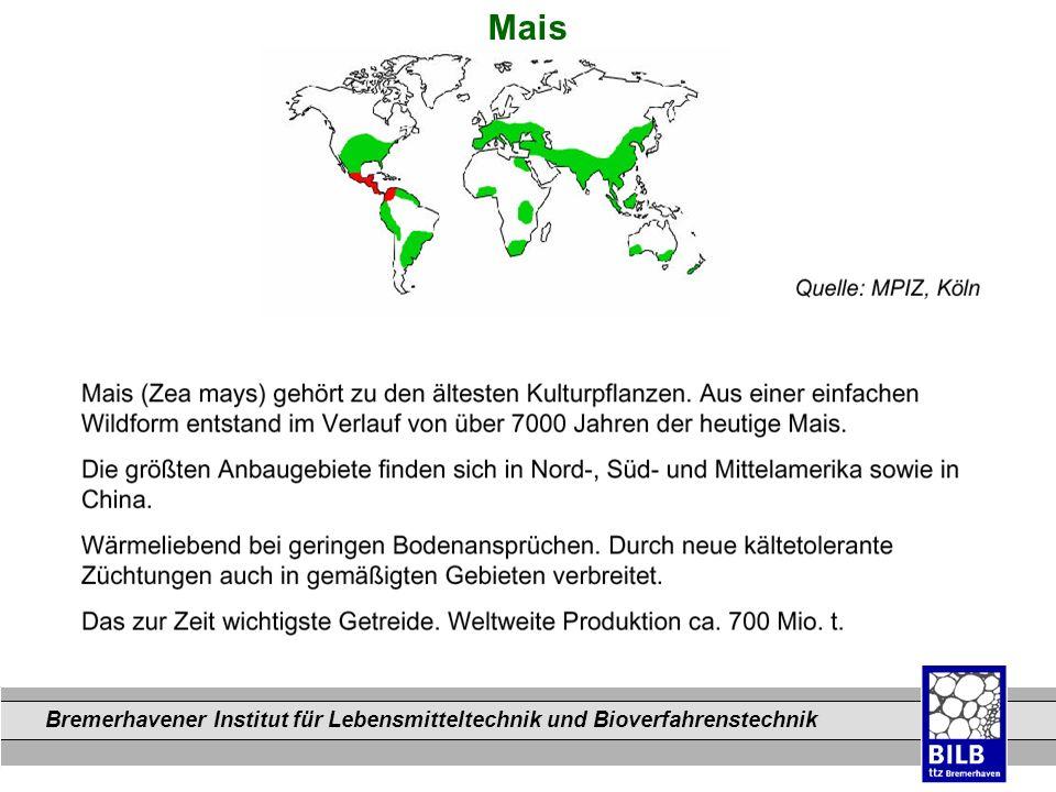 Bremerhavener Institut für Lebensmitteltechnik und Bioverfahrenstechnik Dateinamen Mais