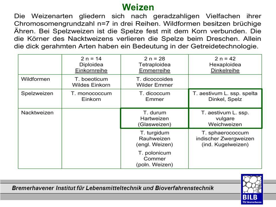 Bremerhavener Institut für Lebensmitteltechnik und Bioverfahrenstechnik Dateinamen Weizen