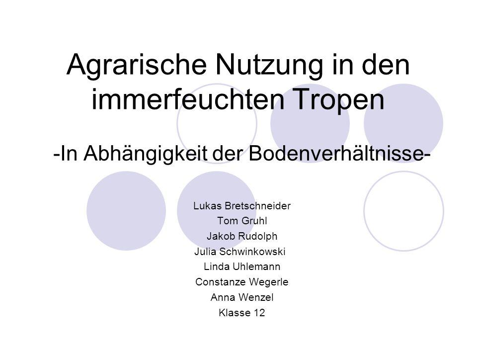 2.2.3) Boden Roterden/Laterite (rötl.