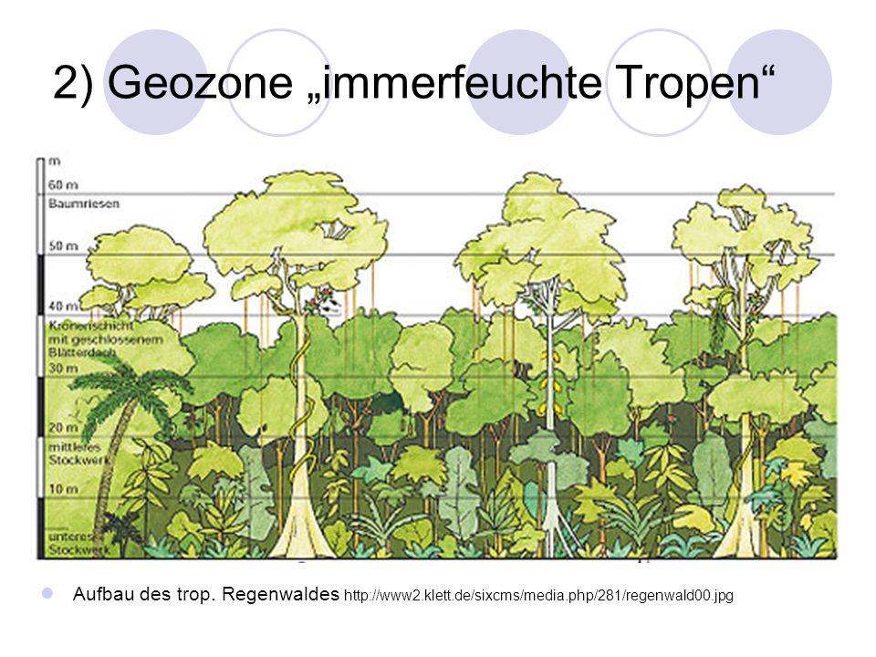 2) Geozone immerfeuchte Tropen Aufbau des trop. Regenwaldes http://www2.klett.de/sixcms/media.php/281/regenwald00.jpg