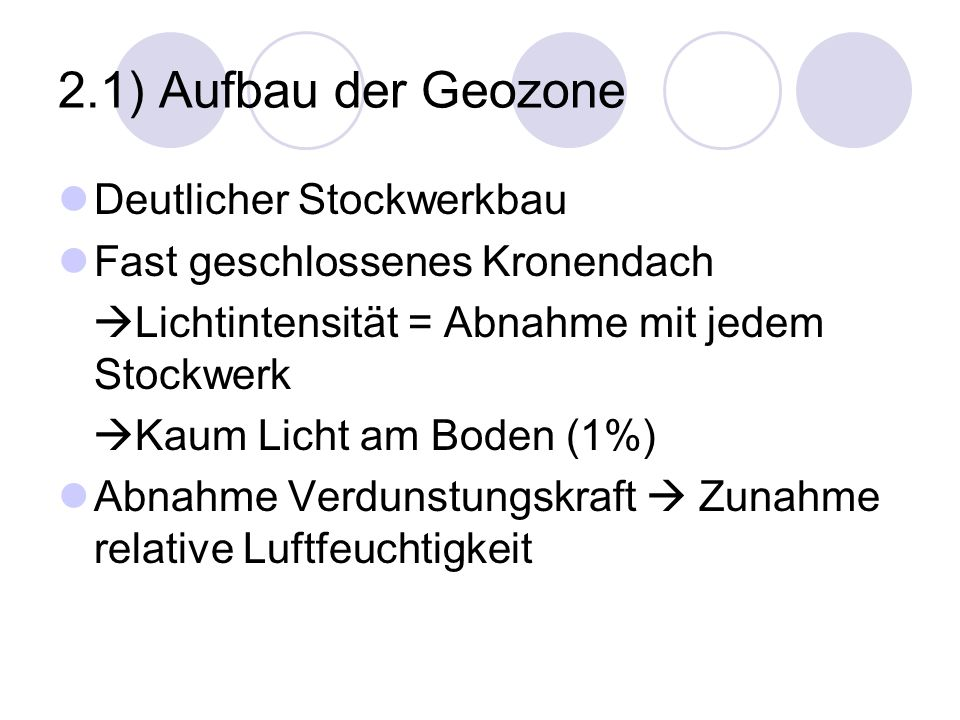 2.1) Aufbau der Geozone Deutlicher Stockwerkbau Fast geschlossenes Kronendach Lichtintensität = Abnahme mit jedem Stockwerk Kaum Licht am Boden (1%) A