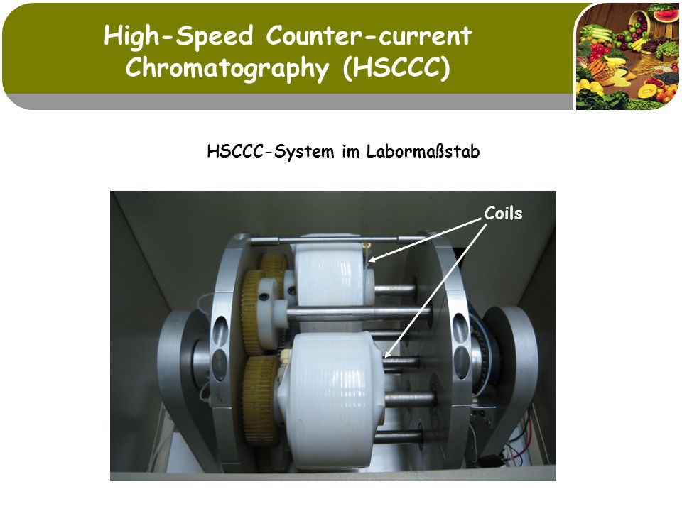 High-Speed Counter-current Chromatography (HSCCC) HSCCC-System im Labormaßstab Coils