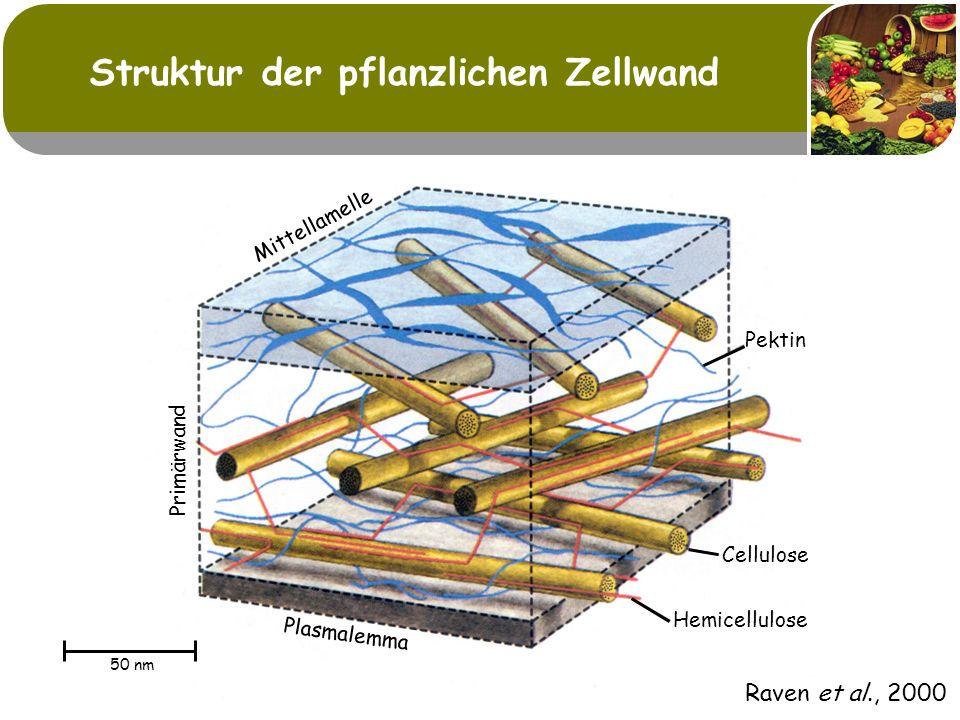 Traubentrester als Quelle natürlicher Antioxidantien Traubentrester weist hohe Gehalte an Polyphenolen auf Phenolgehalte [%]Bemerkungen Stiele1-4 Shrikhande (2000) Shrikhande (2000)Häute 1-2Trauben; Folin-Ciocalteu Kerne5-8 Trester; Lu & Foo (1999) Lu & Foo (1999)ca.