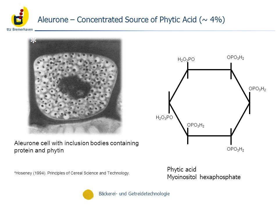 Bäckerei- und Getreidetechnologie Aleurone – Concentrated Source of Phytic Acid (~ 4%) Phytic acid Myoinositol hexaphosphate Aleurone cell with inclus
