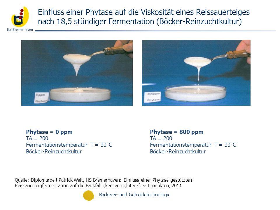 Bäckerei- und Getreidetechnologie Einfluss einer Phytase auf die Viskosität eines Reissauerteiges nach 18,5 stündiger Fermentation (Böcker-Reinzuchtku