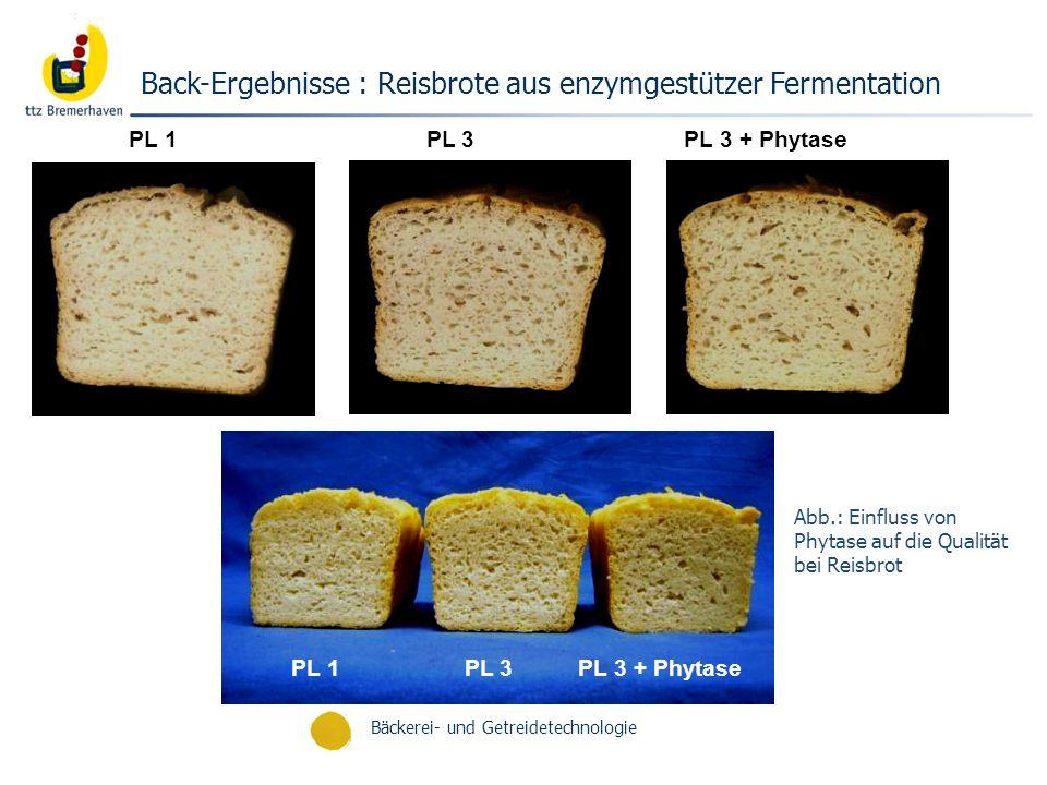 Bäckerei- und Getreidetechnologie Back-Ergebnisse : Reisbrote aus enzymgestützer Fermentation PL 1 PL 3 PL 3 + Phytase Abb.: Einfluss von Phytase auf