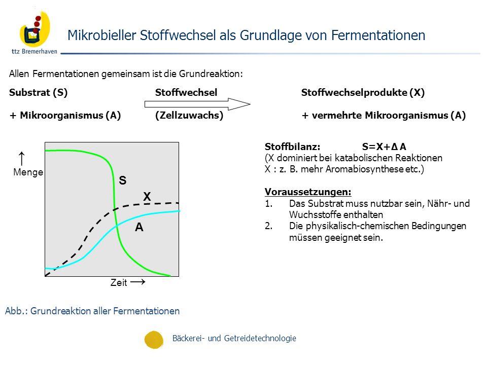 Bäckerei- und Getreidetechnologie Abb.: Grundreaktion aller Fermentationen Mikrobieller Stoffwechsel als Grundlage von Fermentationen Allen Fermentati