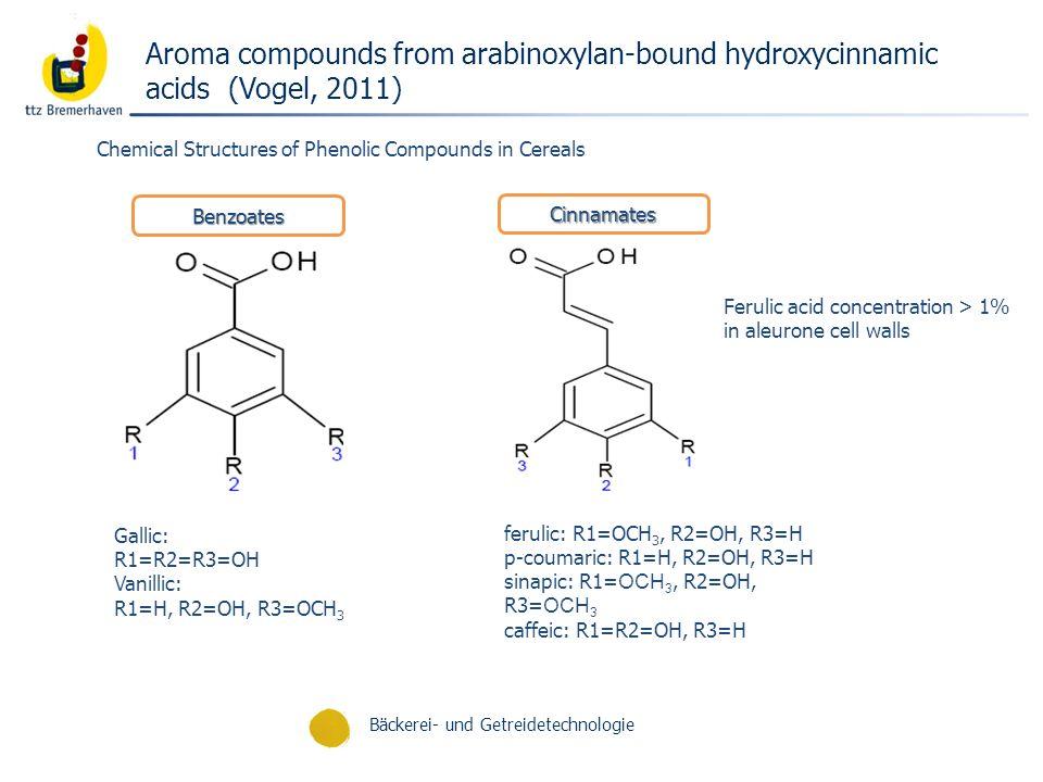 Bäckerei- und Getreidetechnologie Aroma compounds from arabinoxylan-bound hydroxycinnamic acids (Vogel, 2011) Chemical Structures of Phenolic Compound
