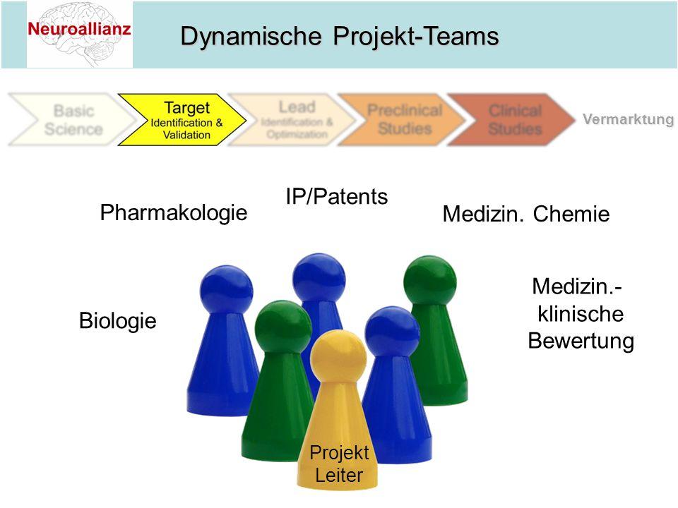 Dynamische Projekt-Teams Biologie Pharmakologie IP/Patents Medizin. Chemie Projekt Leiter Medizin.- klinische Bewertung Vermarktung