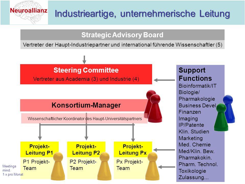 Industrieartige, unternehmerische Leitung Industrieartige, unternehmerische Leitung Strategic Advisory Board Vertreter der Haupt-Industriepartner und