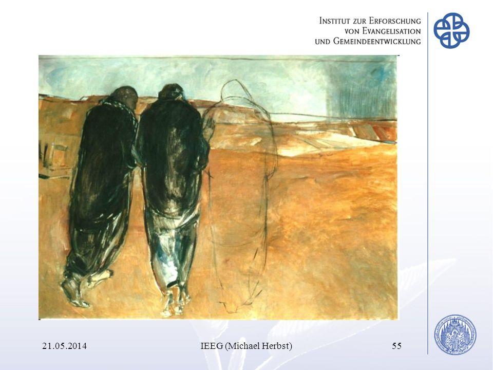 21.05.2014IEEG (Michael Herbst)55