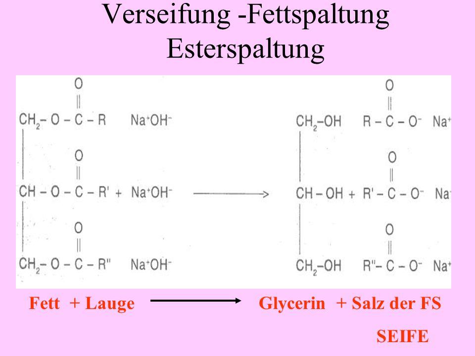 Fettextraktion mit Benzin