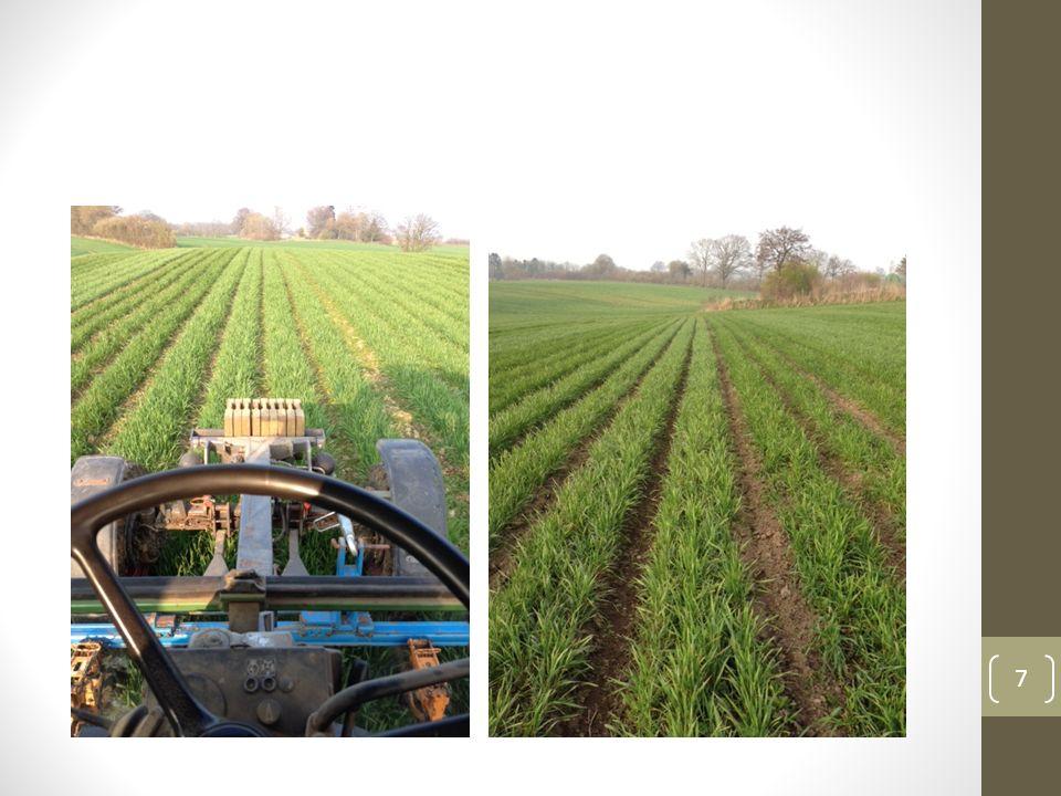 Getreideveredlung Verarbeitung von Getreide ab Feld zum Bäcker Schählmühle zum Entspelzen von Dinkel, Buchweizen Aufbereitung von Saatgut 3.000 to Dinkel p.a.