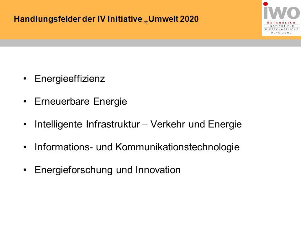 Handlungsfelder der IV Initiative Umwelt 2020 Energieeffizienz Erneuerbare Energie Intelligente Infrastruktur – Verkehr und Energie Informations- und Kommunikationstechnologie Energieforschung und Innovation