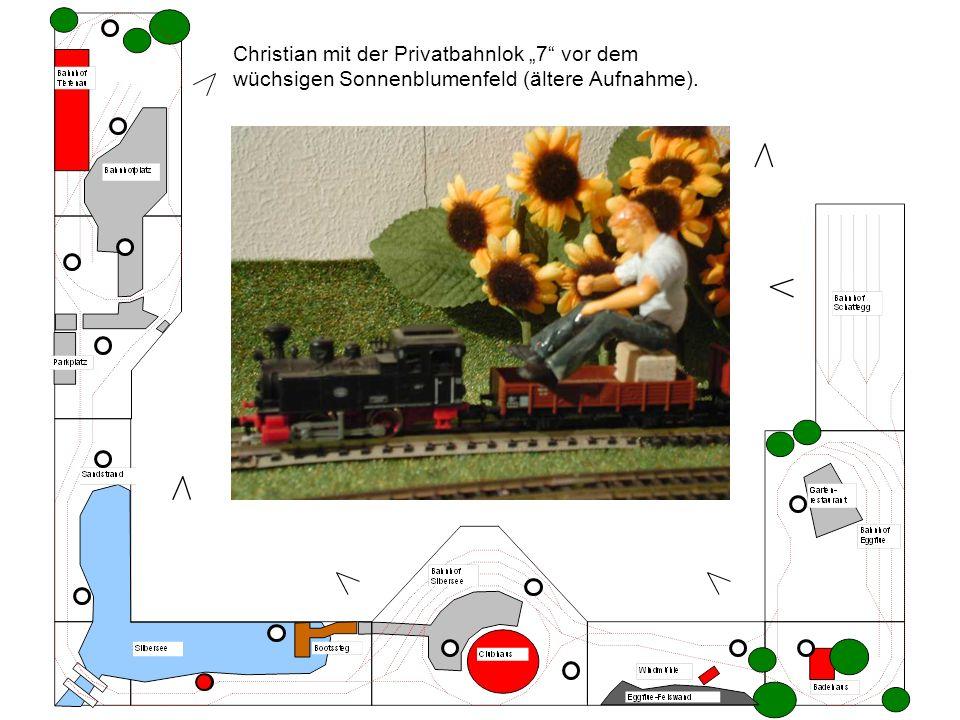 Christian mit der Privatbahnlok 7 vor dem wüchsigen Sonnenblumenfeld (ältere Aufnahme).