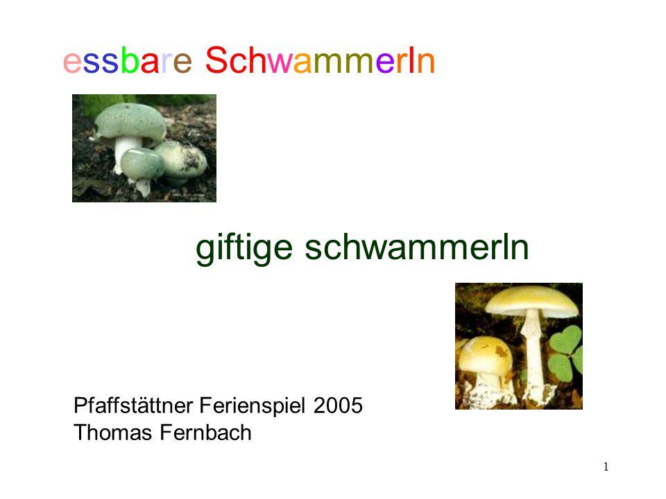 1 essbare Schwammerln giftige schwammerln Pfaffstättner Ferienspiel 2005 Thomas Fernbach