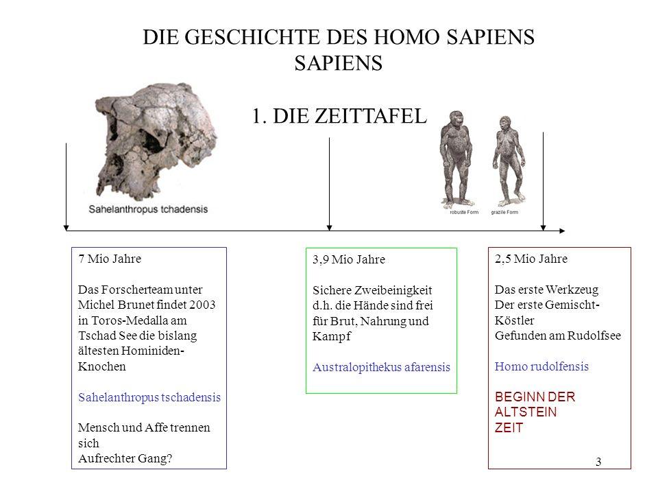 4 1,4 Mio Jahre Homo erectus Er kannte vermutlich schon das Feuer Turkana Boy Peking Mensch Fundstellen in Georgien 800.000 Jahre Erste Zeichen des modernen Menschen Homo heidelbergensis 300.000 Jahre Höhlenbestattung Gehirn größer als beim sapiens aber anders Beherrschte 270.000 Jahre Eurasien Homo neandertalensis