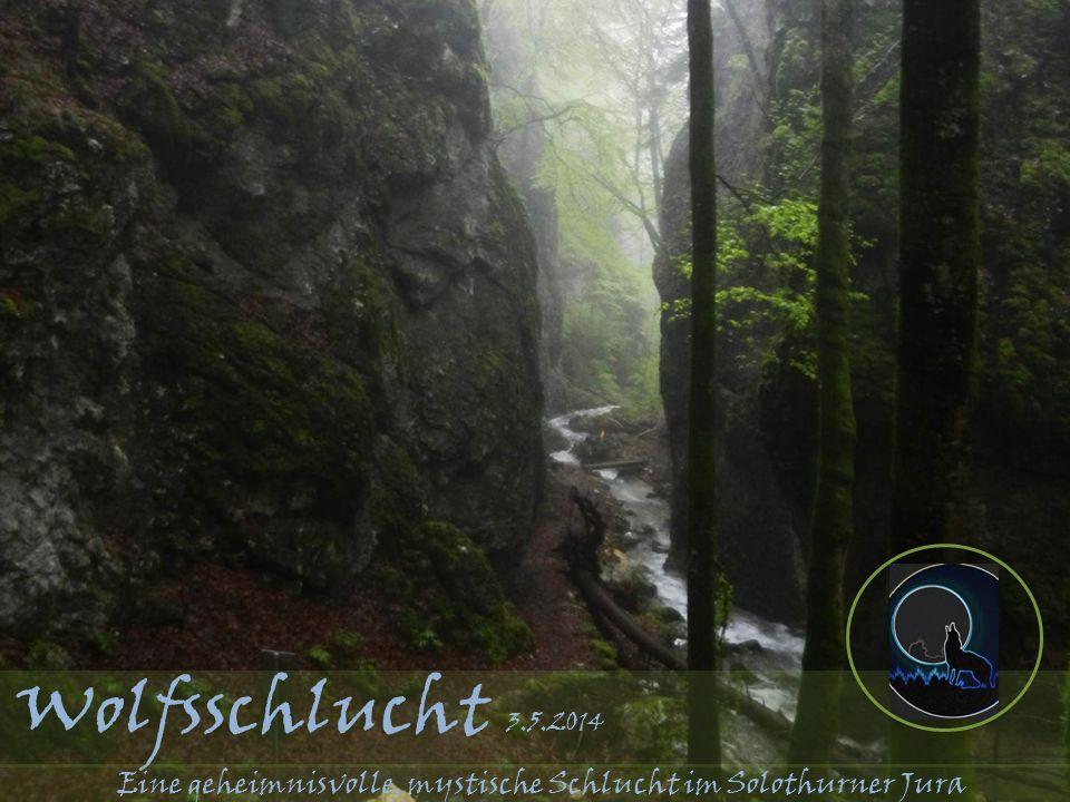 Wolfsschlucht 3.5.2014 Eine geheimnisvolle, mystische Schlucht im Solothurner Jura