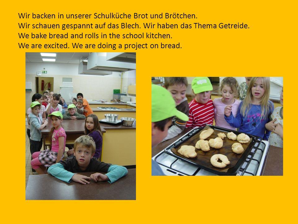 Wir backen in unserer Schulküche Brot und Brötchen. Wir schauen gespannt auf das Blech. Wir haben das Thema Getreide. We bake bread and rolls in the s