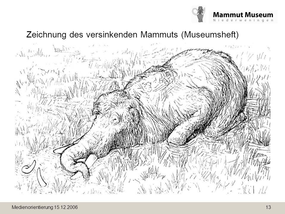 Medienorientierung 15.12.2006 13 Zeichnung des versinkenden Mammuts (Museumsheft)