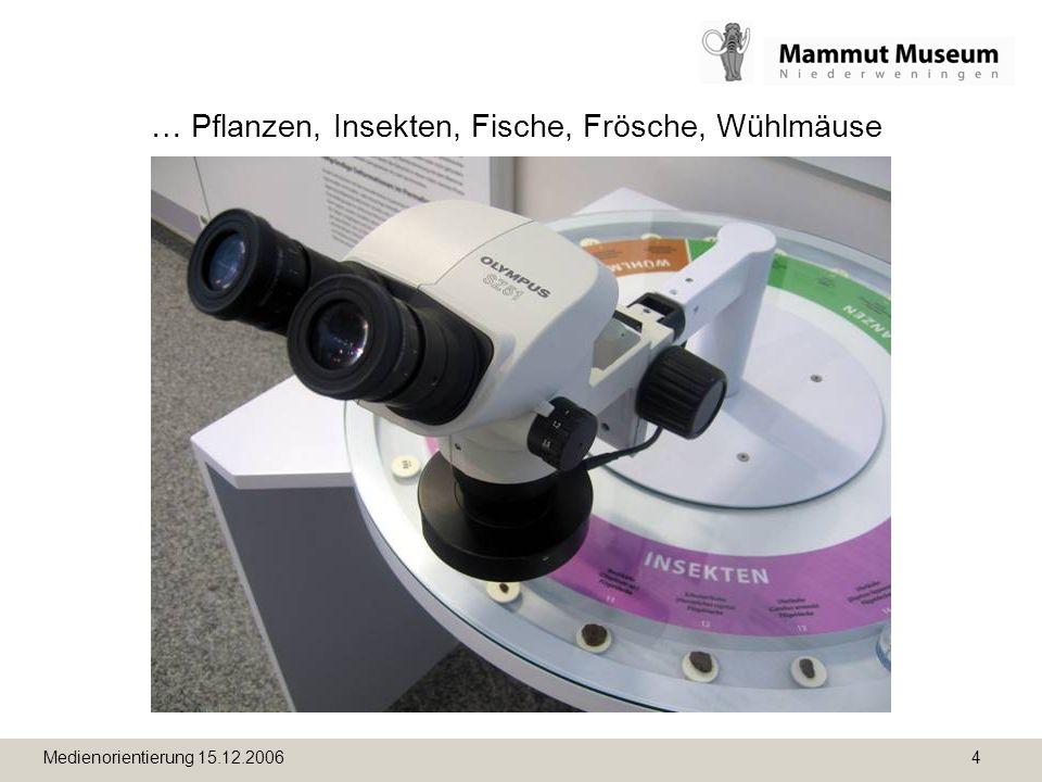 Medienorientierung 15.12.2006 4 … Pflanzen, Insekten, Fische, Frösche, Wühlmäuse